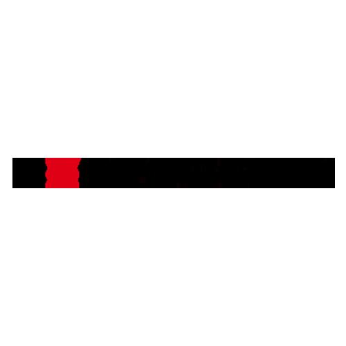 Logo Renson