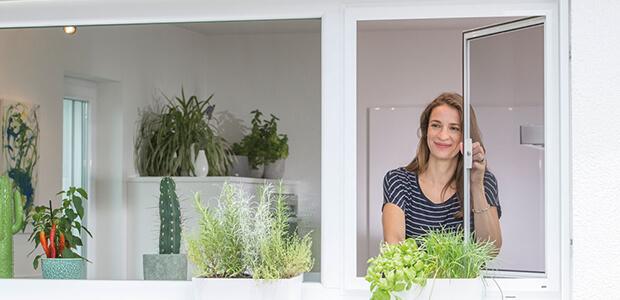 MHZ Insektenschutz für Fenster