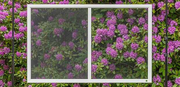 MHZ Insektenschutz für Fenster Neher Pollen-Gewebe, Foto: MHZ